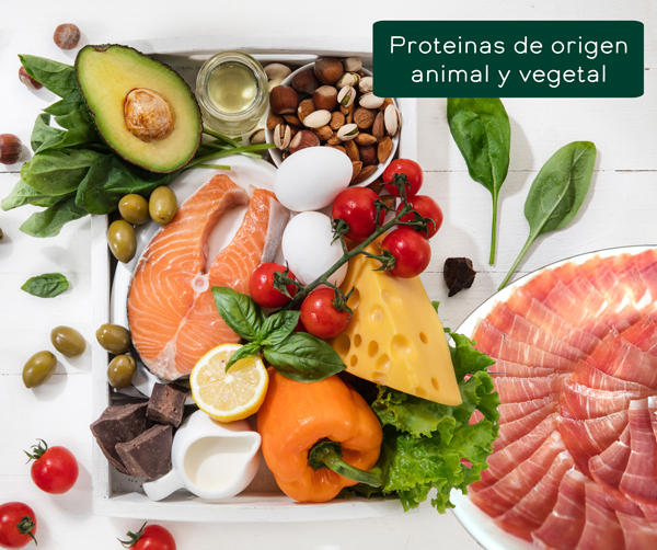 ¿Por qué elegir la proteína animal antes de la proteína vegetal?